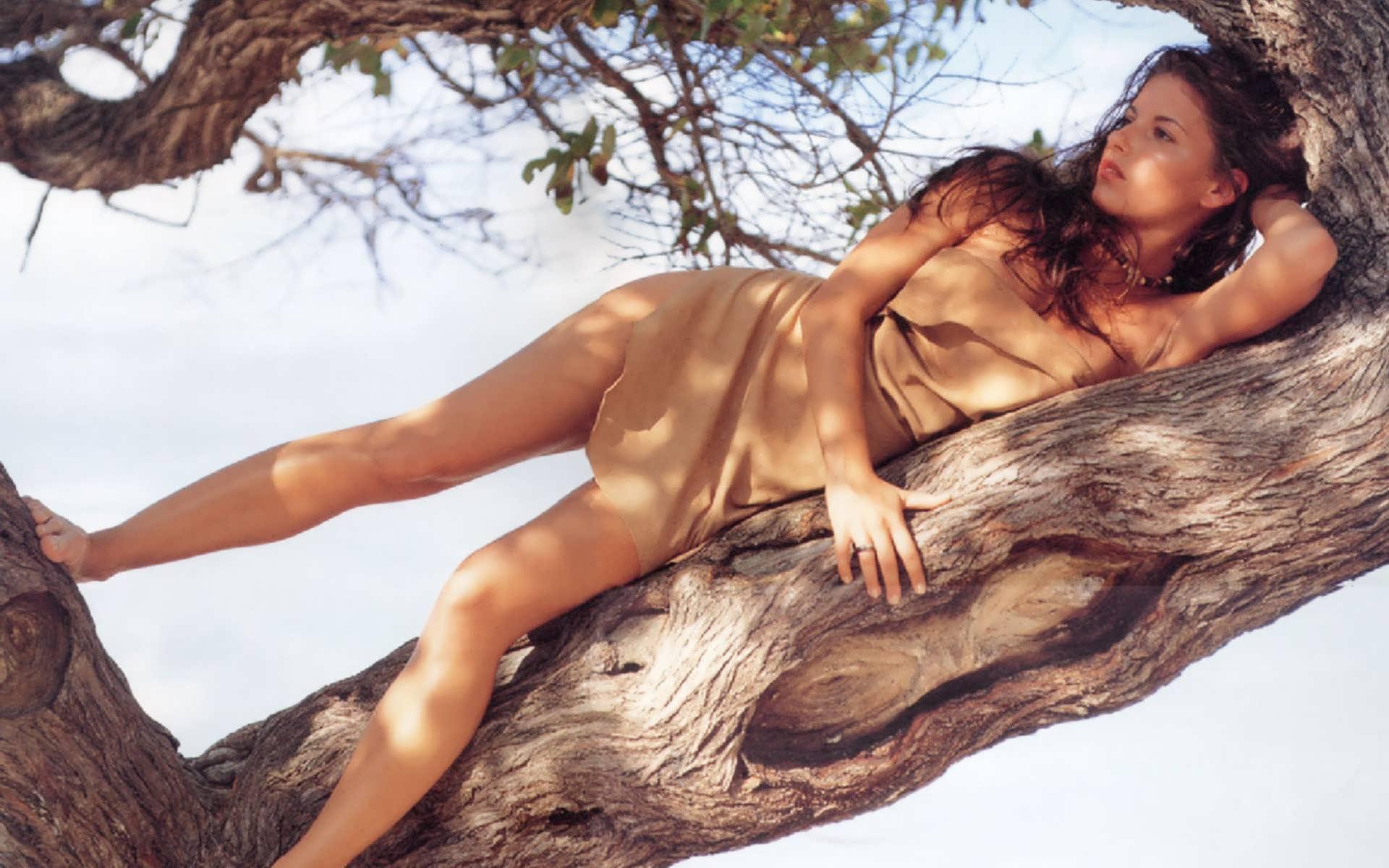 Я на деревце сижу фото девушки в чулках 20 фотография
