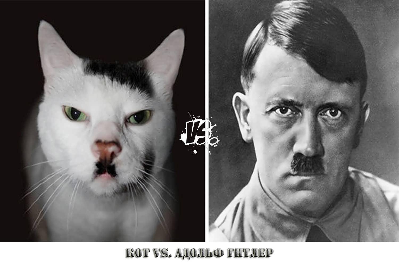 Фото людей похоже на животных 4